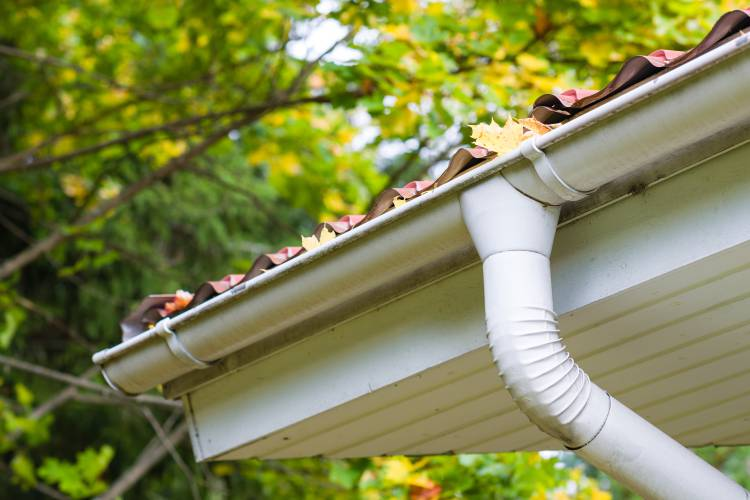 Gutters and downspouts maintenance