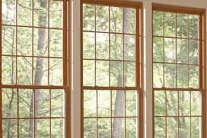 Fiberglass Replacement Window Advantages